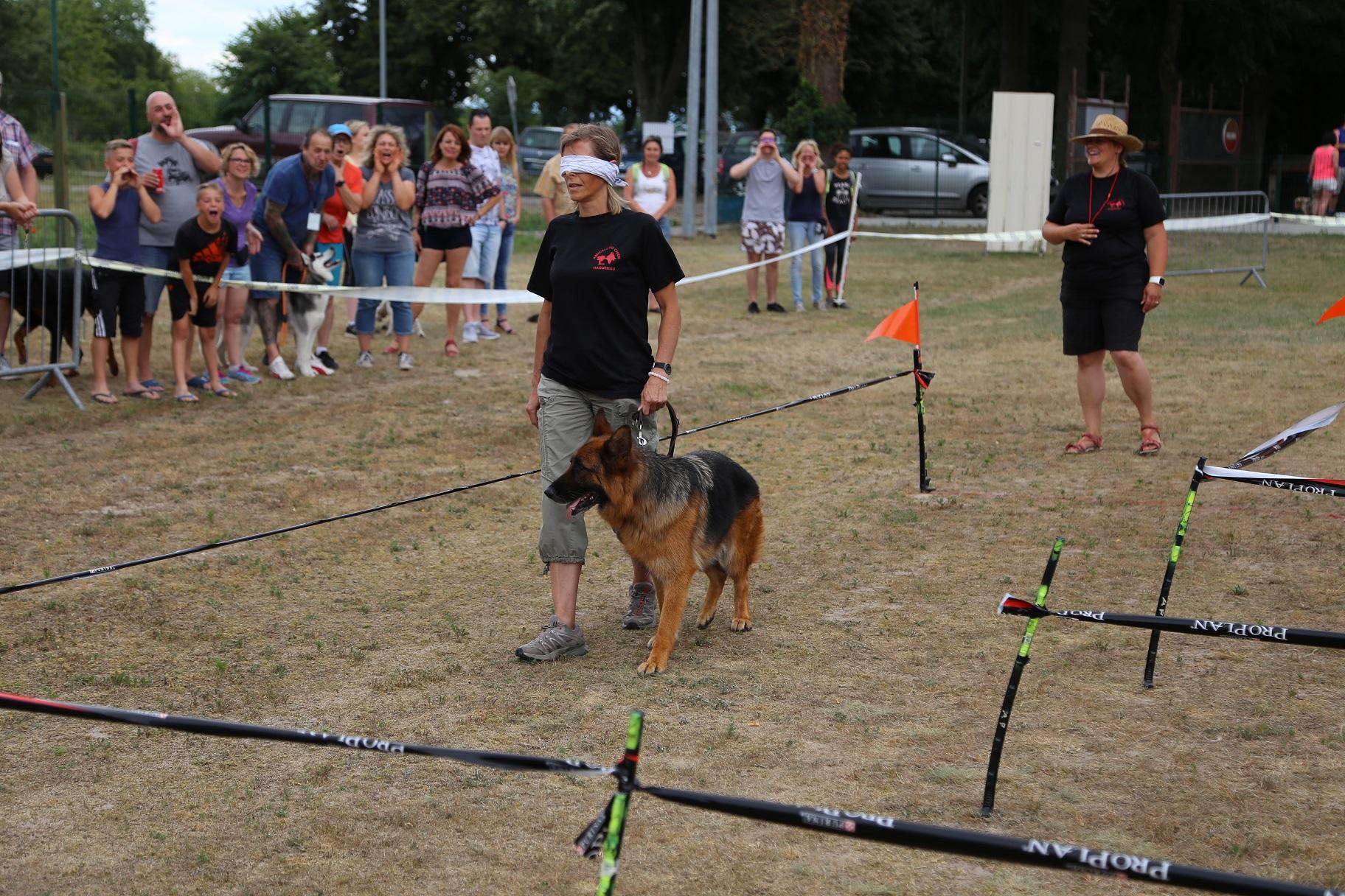 Amicale du chien de Haguenau | Club canin du nord de l'Alsace